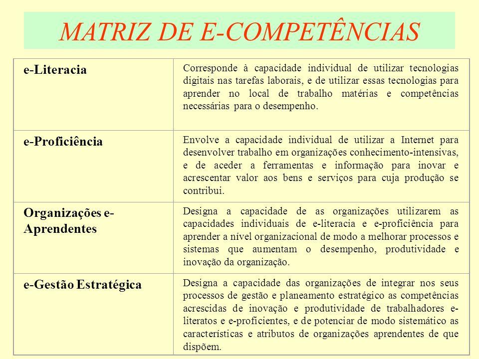 MATRIZ DE E-COMPETÊNCIAS