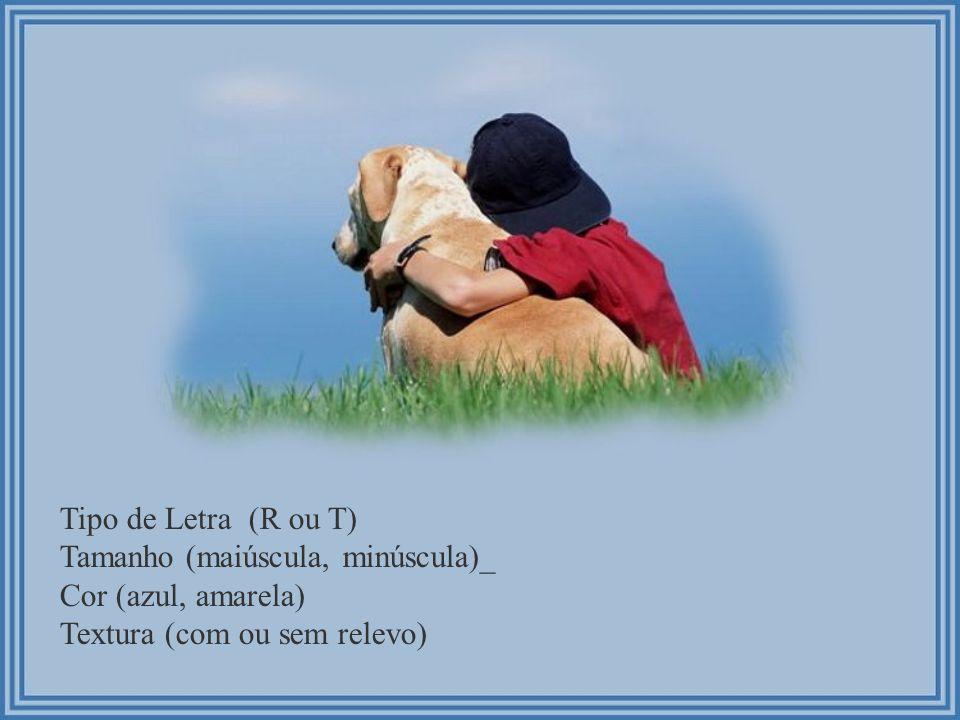 Tipo de Letra (R ou T) Tamanho (maiúscula, minúscula)_.