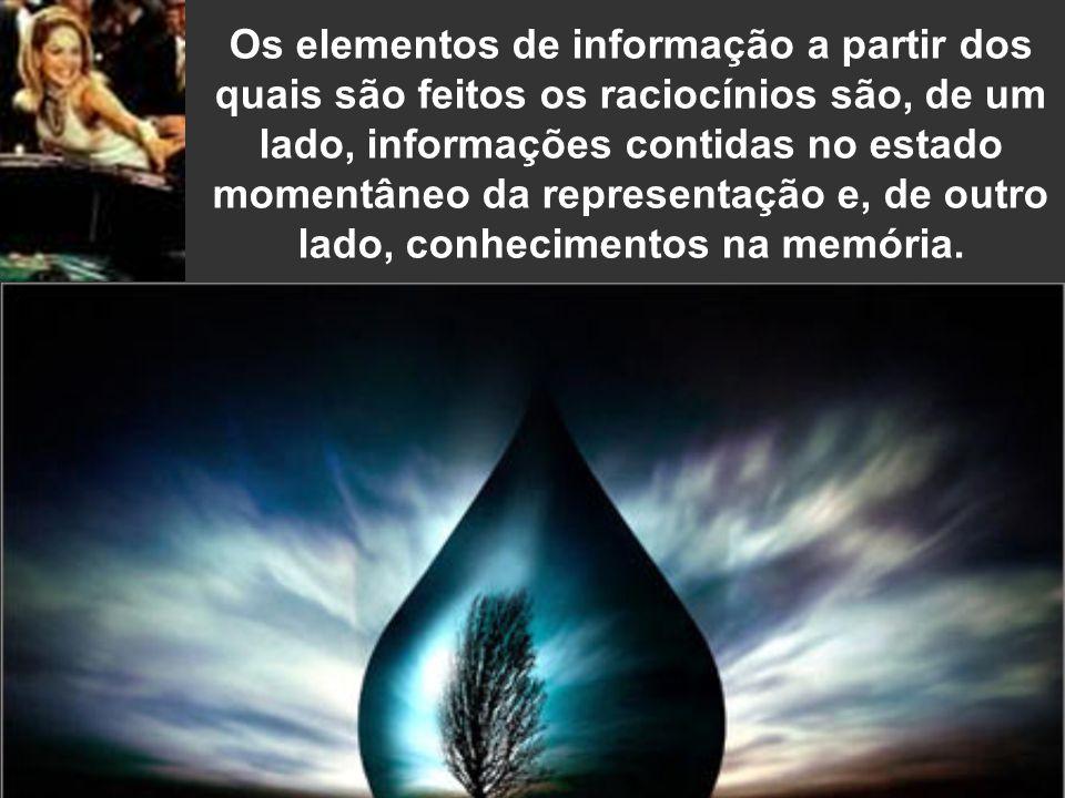 Os elementos de informação a partir dos quais são feitos os raciocínios são, de um lado, informações contidas no estado momentâneo da representação e, de outro lado, conhecimentos na memória.