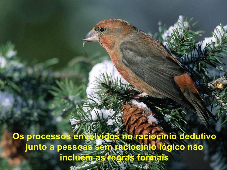 Os processos envolvidos no raciocínio dedutivo junto a pessoas sem raciocínio lógico não incluem as regras formais