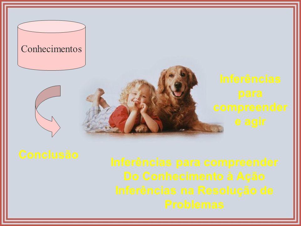 Inferências para compreender e agir
