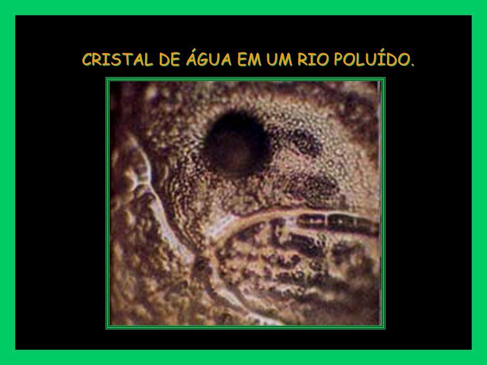 CRISTAL DE ÁGUA EM UM RIO POLUÍDO.