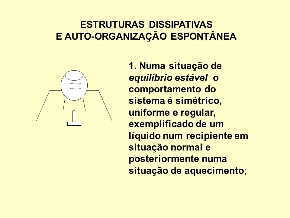 ESTRUTURAS DISSIPATIVAS E AUTO-ORGANIZAÇÃO ESPONTÂNEA