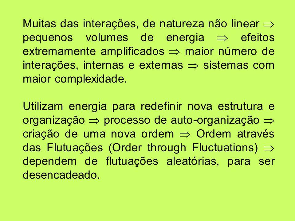 Muitas das interações, de natureza não linear  pequenos volumes de energia  efeitos extremamente amplificados  maior número de interações, internas e externas  sistemas com maior complexidade.