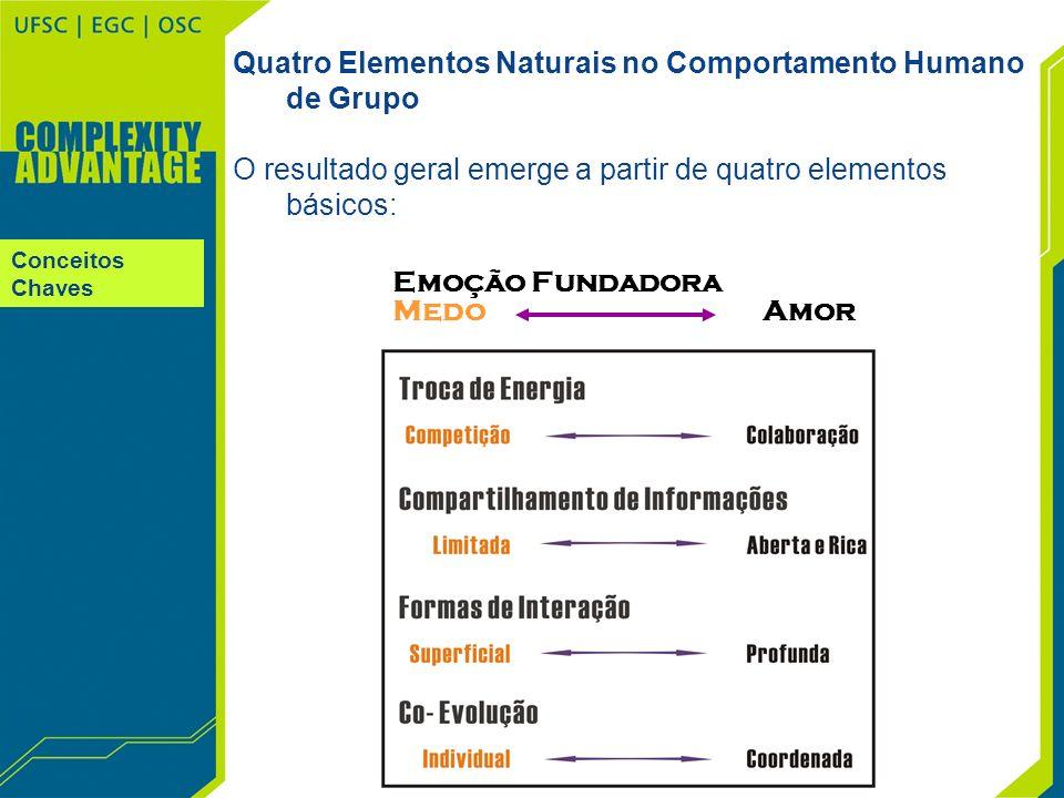 Quatro Elementos Naturais no Comportamento Humano de Grupo