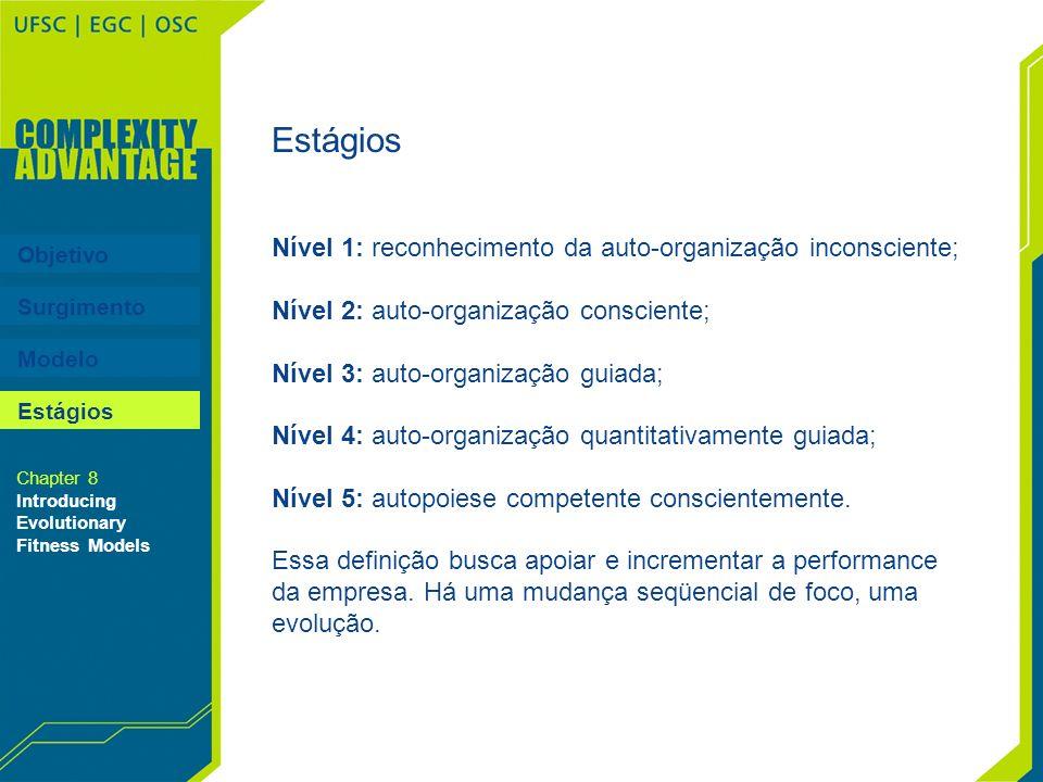 Estágios Nível 1: reconhecimento da auto-organização inconsciente;