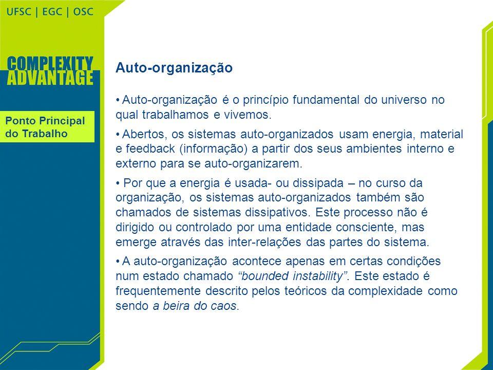 Auto-organização Auto-organização é o princípio fundamental do universo no qual trabalhamos e vivemos.
