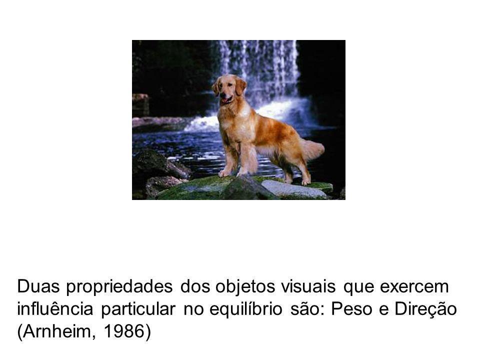 Duas propriedades dos objetos visuais que exercem influência particular no equilíbrio são: Peso e Direção (Arnheim, 1986)