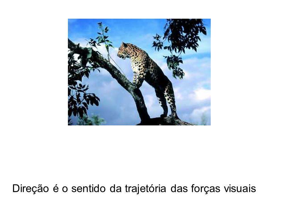 Direção é o sentido da trajetória das forças visuais