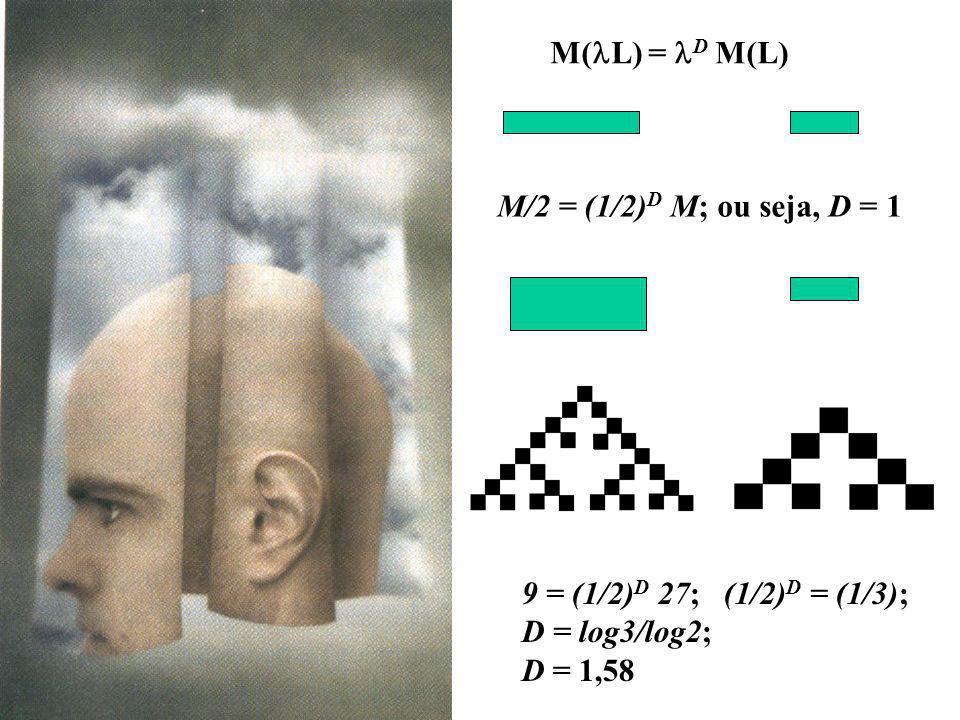 M(lL) = lD M(L) M/2 = (1/2)D M; ou seja, D = 1.