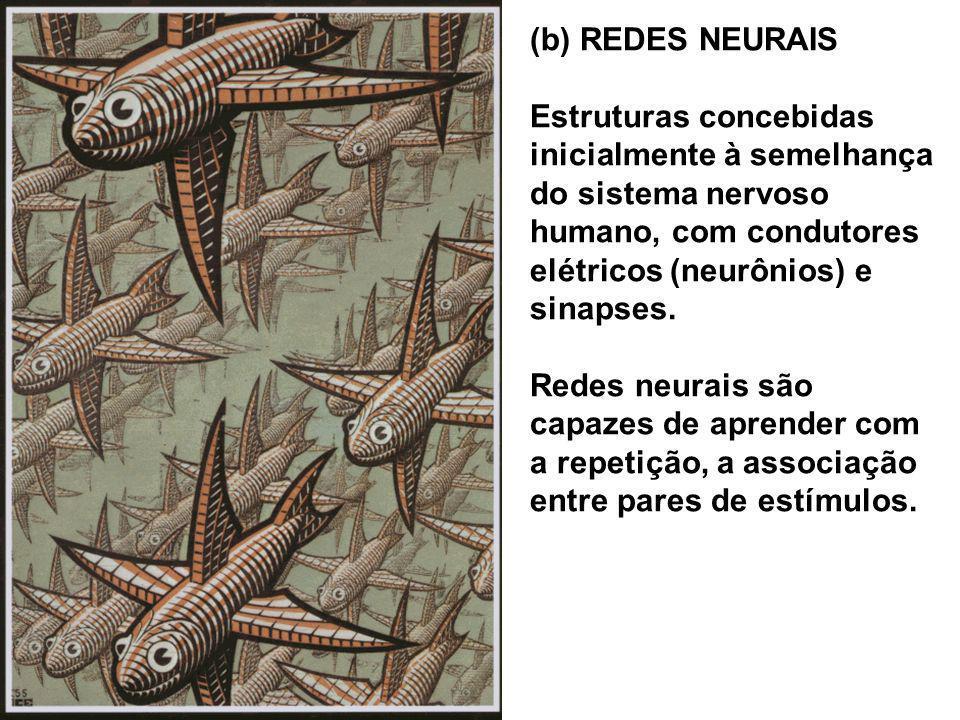 (b) REDES NEURAIS Estruturas concebidas inicialmente à semelhança do sistema nervoso humano, com condutores elétricos (neurônios) e sinapses.