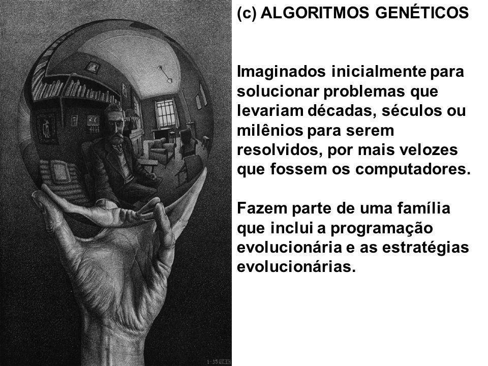 (c) ALGORITMOS GENÉTICOS