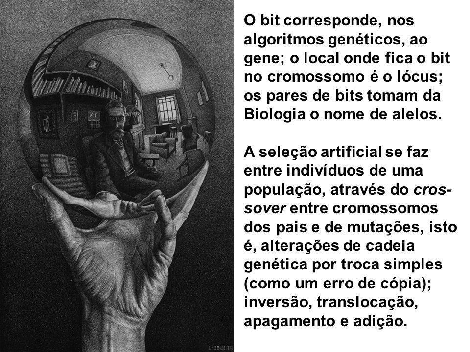O bit corresponde, nos algoritmos genéticos, ao gene; o local onde fica o bit no cromossomo é o lócus; os pares de bits tomam da Biologia o nome de alelos.