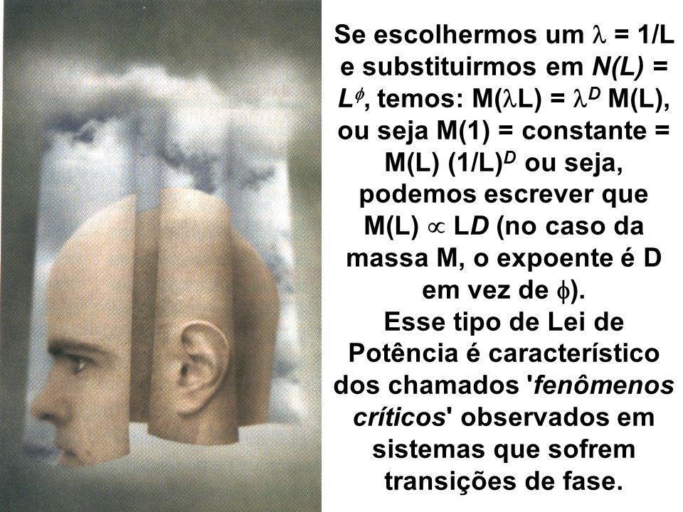 Se escolhermos um l = 1/L e substituirmos em N(L) = Lf, temos: M(lL) = lD M(L), ou seja M(1) = constante = M(L) (1/L)D ou seja, podemos escrever que M(L) µ LD (no caso da massa M, o expoente é D em vez de f).