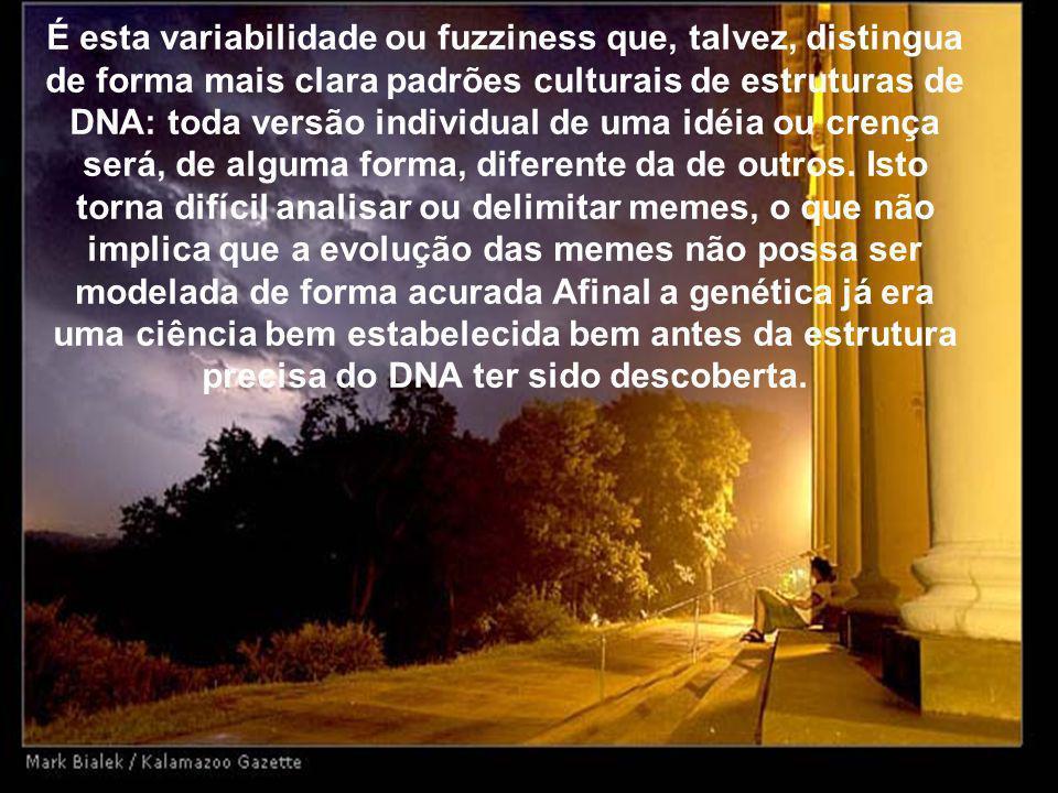 É esta variabilidade ou fuzziness que, talvez, distingua de forma mais clara padrões culturais de estruturas de DNA: toda versão individual de uma idéia ou crença será, de alguma forma, diferente da de outros.