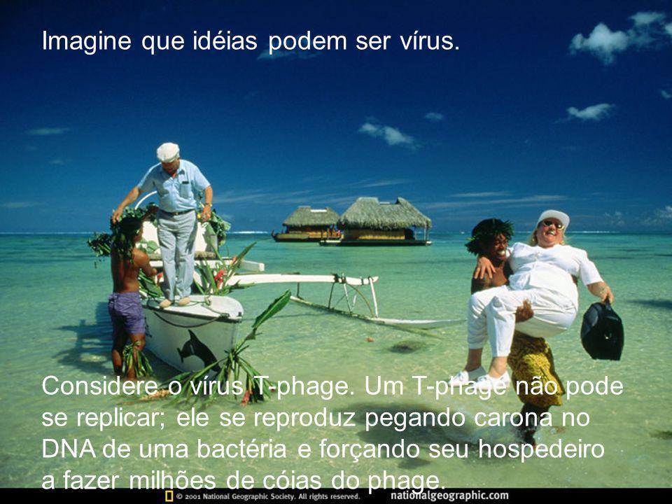 Imagine que idéias podem ser vírus.