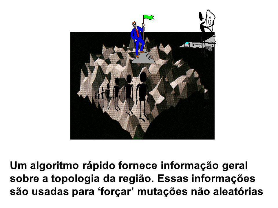 Um algoritmo rápido fornece informação geral sobre a topologia da região.