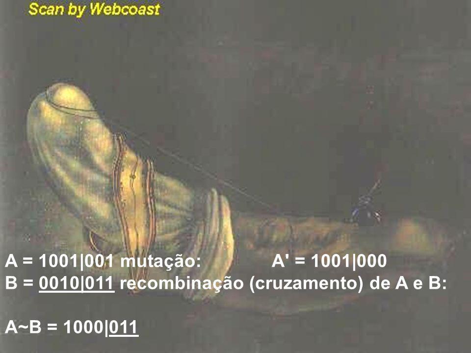 A = 1001|001 mutação: A = 1001|000 B = 0010|011 recombinação (cruzamento) de A e B: A~B = 1000|011.