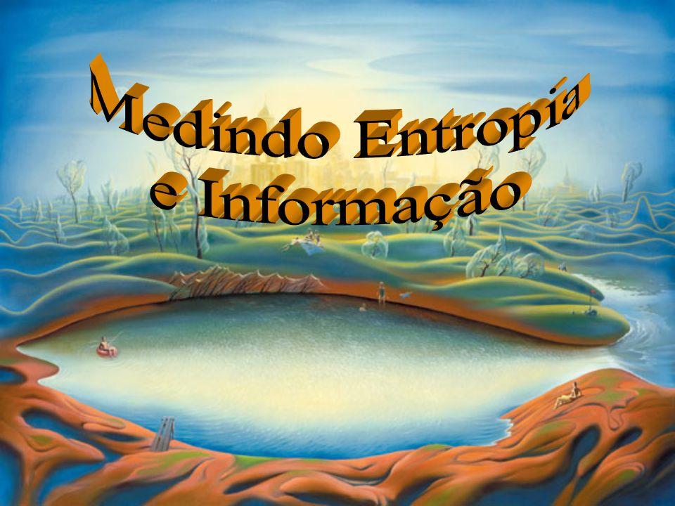 Medindo Entropia e Informação