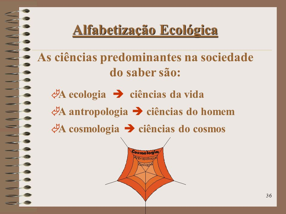 As ciências predominantes na sociedade do saber são: