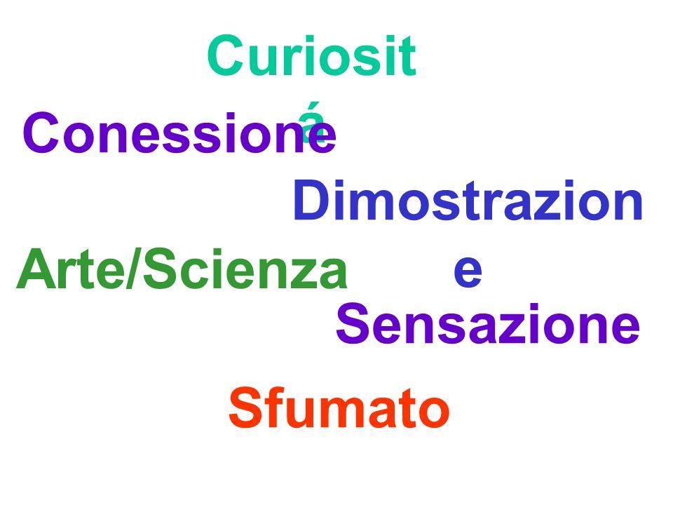 Curiositá Conessione Dimostrazione Arte/Scienza Sensazione Sfumato