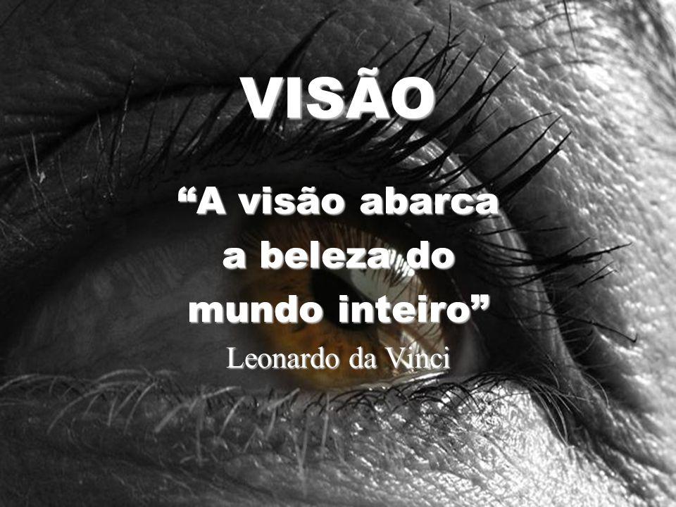 A visão abarca a beleza do mundo inteiro Leonardo da Vinci