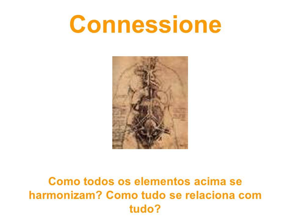 Connessione Como todos os elementos acima se harmonizam Como tudo se relaciona com tudo