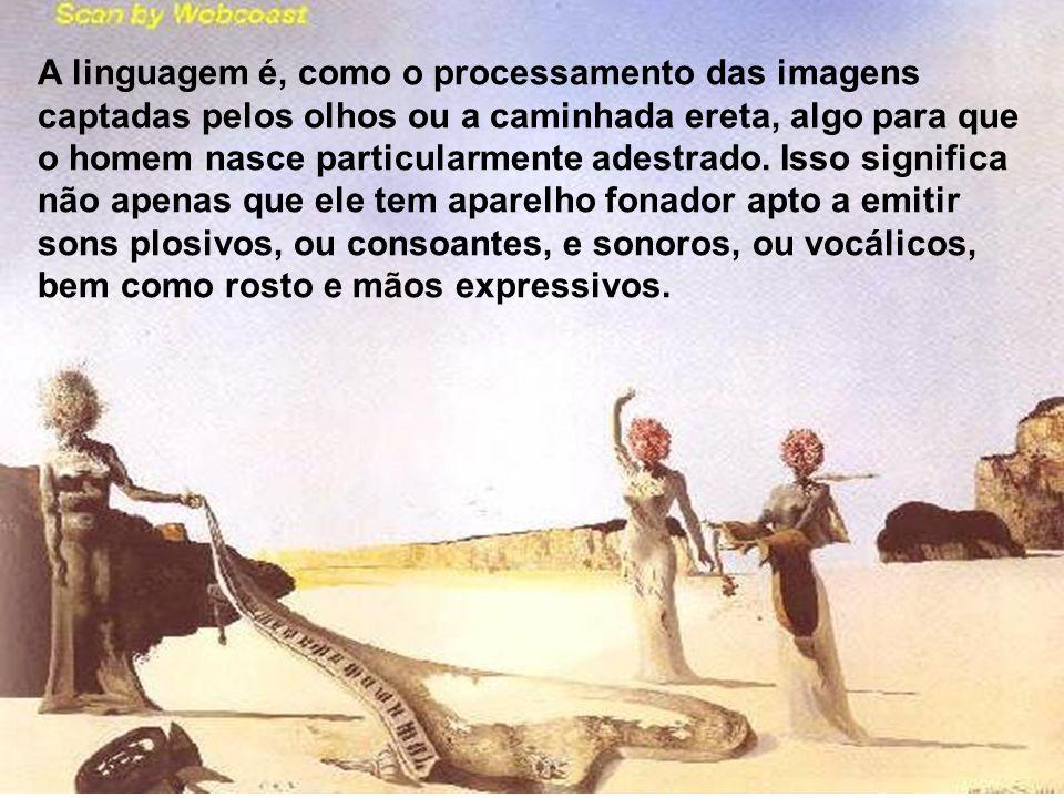 A linguagem é, como o processamento das imagens captadas pelos olhos ou a caminhada ereta, algo para que o homem nasce particularmente adestrado.