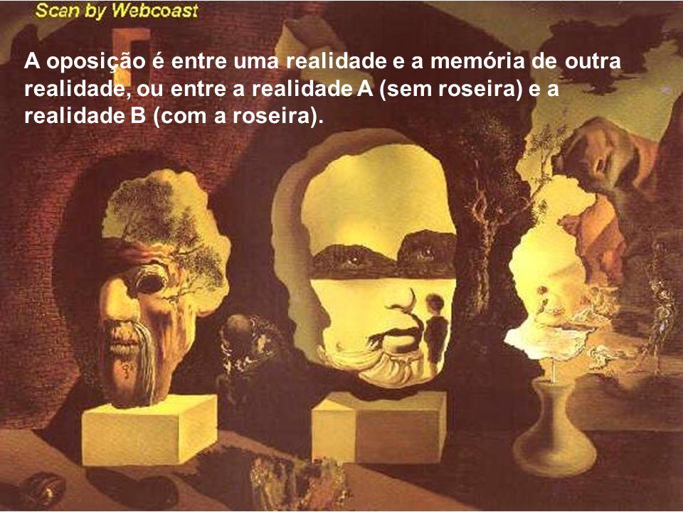 A oposição é entre uma realidade e a memória de outra realidade, ou entre a realidade A (sem roseira) e a realidade B (com a roseira).