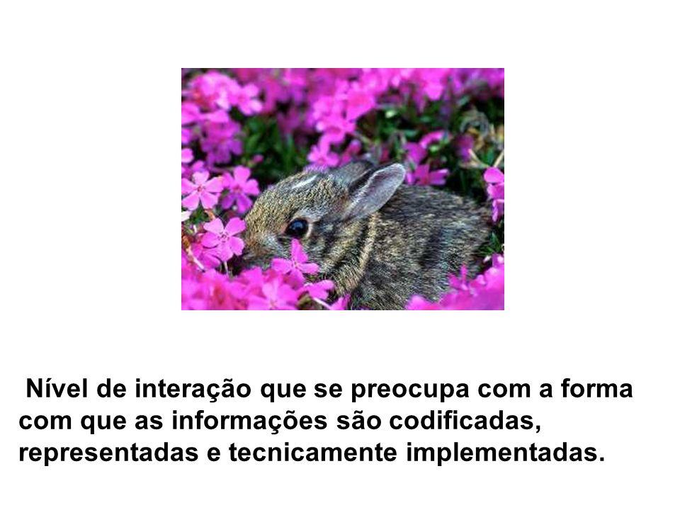 Nível de interação que se preocupa com a forma com que as informações são codificadas, representadas e tecnicamente implementadas.