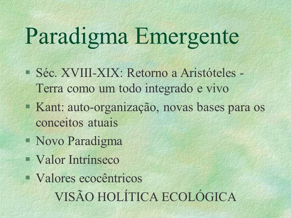 VISÃO HOLÍTICA ECOLÓGICA