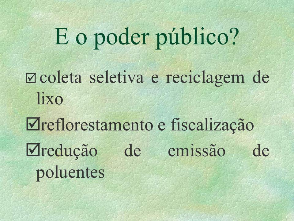 E o poder público reflorestamento e fiscalização