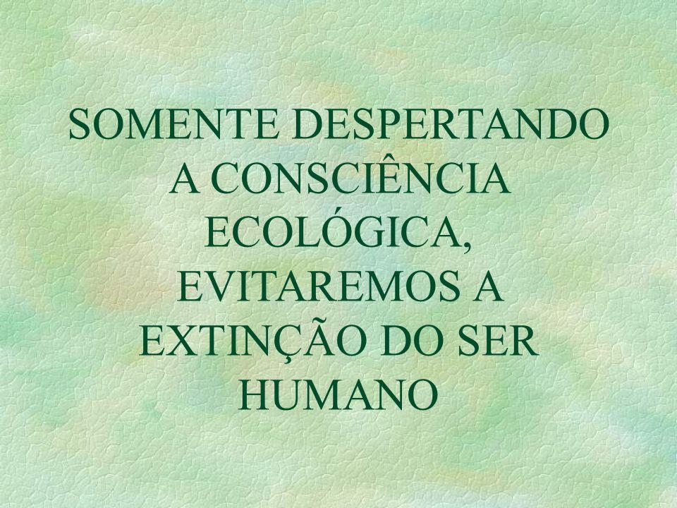 SOMENTE DESPERTANDO A CONSCIÊNCIA ECOLÓGICA, EVITAREMOS A EXTINÇÃO DO SER HUMANO
