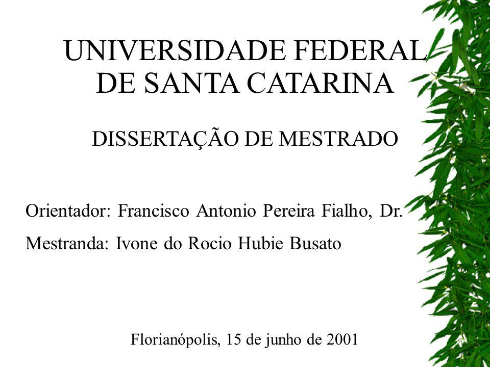 UNIVERSIDADE FEDERAL DE SANTA CATARINA DISSERTAÇÃO DE MESTRADO