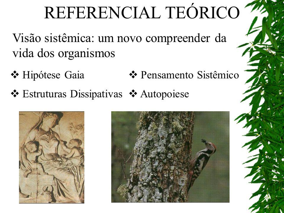 REFERENCIAL TEÓRICO Visão sistêmica: um novo compreender da vida dos organismos. Hipótese Gaia. Pensamento Sistêmico.