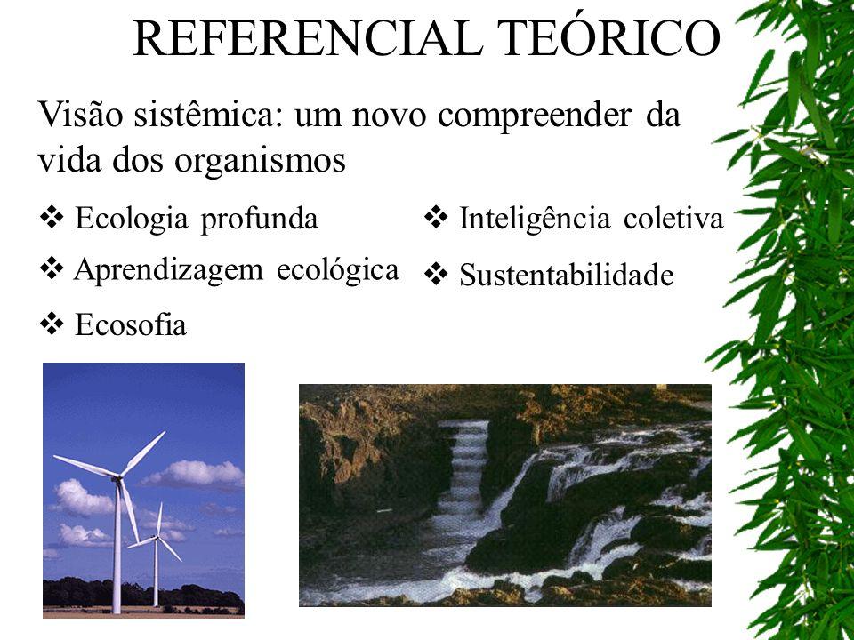 REFERENCIAL TEÓRICO Visão sistêmica: um novo compreender da vida dos organismos. Ecologia profunda.