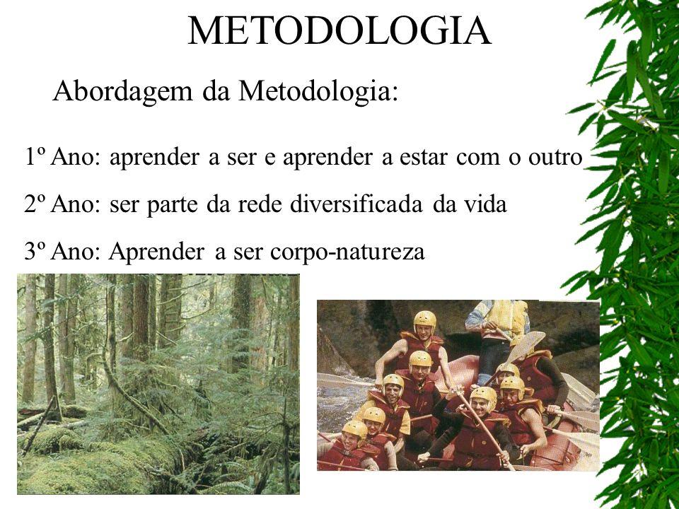 METODOLOGIA Abordagem da Metodologia:
