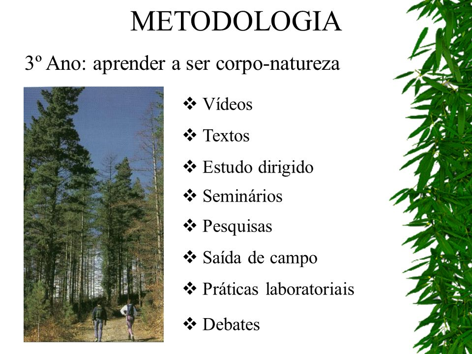 METODOLOGIA 3º Ano: aprender a ser corpo-natureza Vídeos Textos