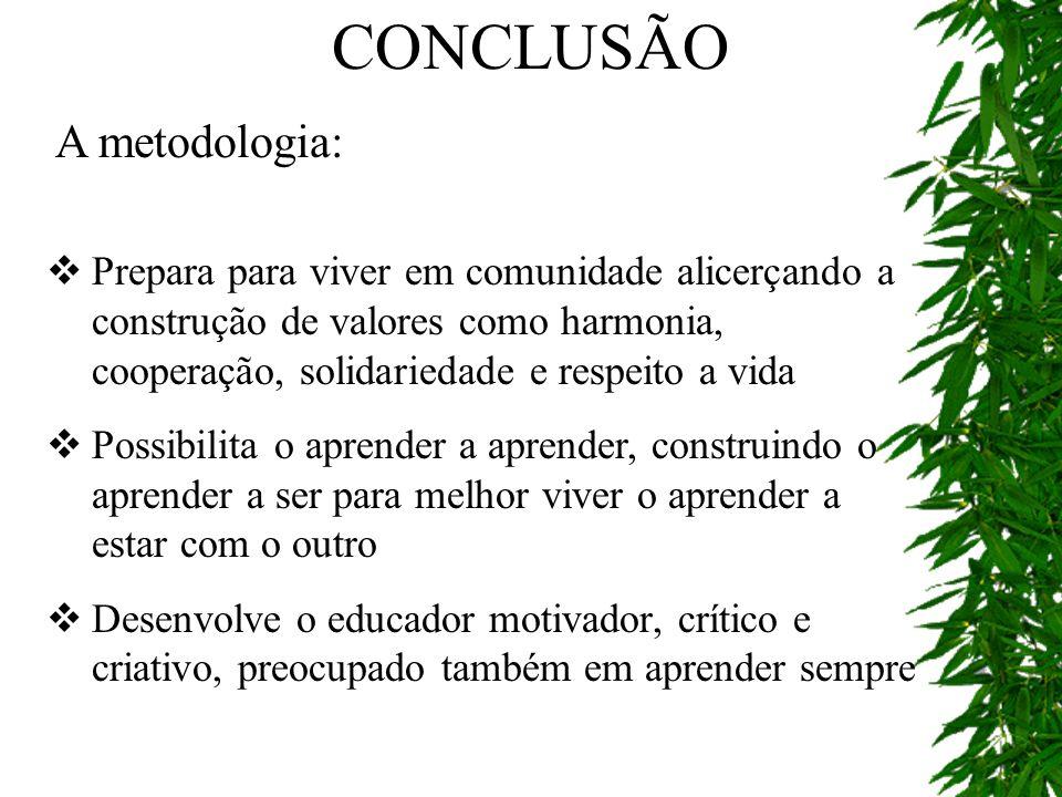 CONCLUSÃO A metodologia: