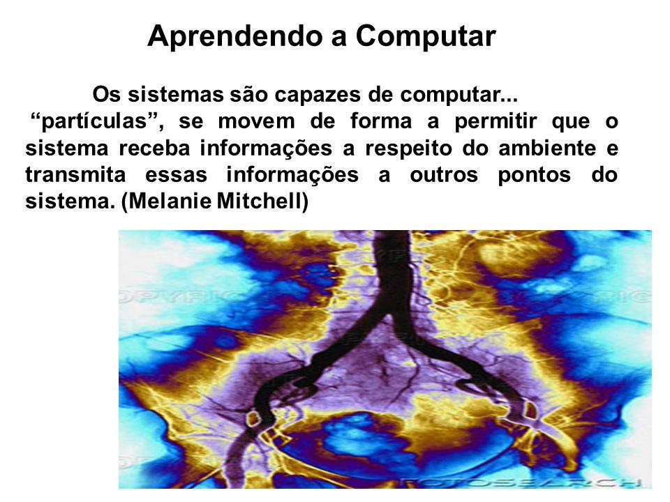 Aprendendo a Computar Os sistemas são capazes de computar...