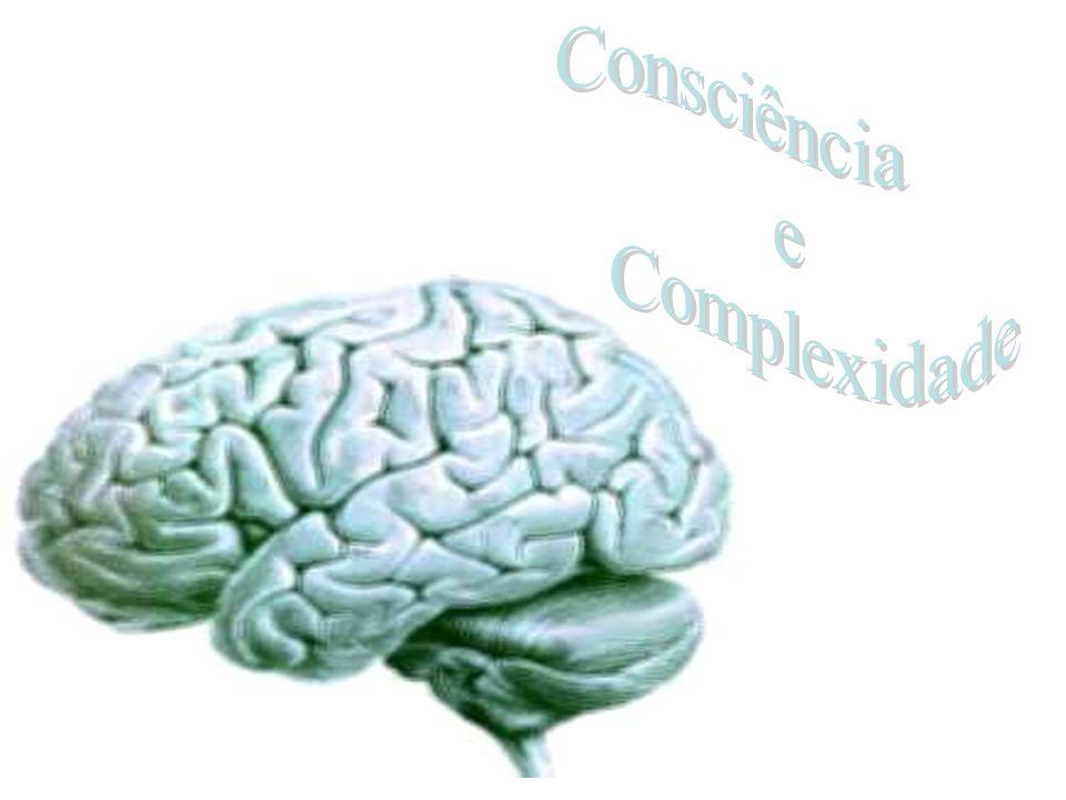 Consciência e Complexidade