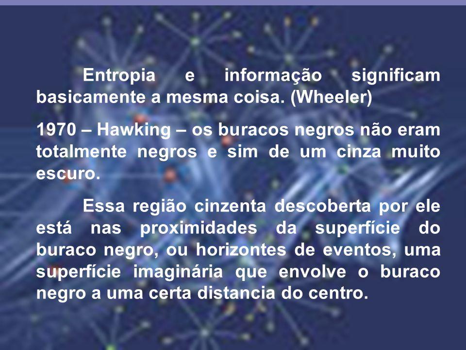 Entropia e informação significam basicamente a mesma coisa. (Wheeler)