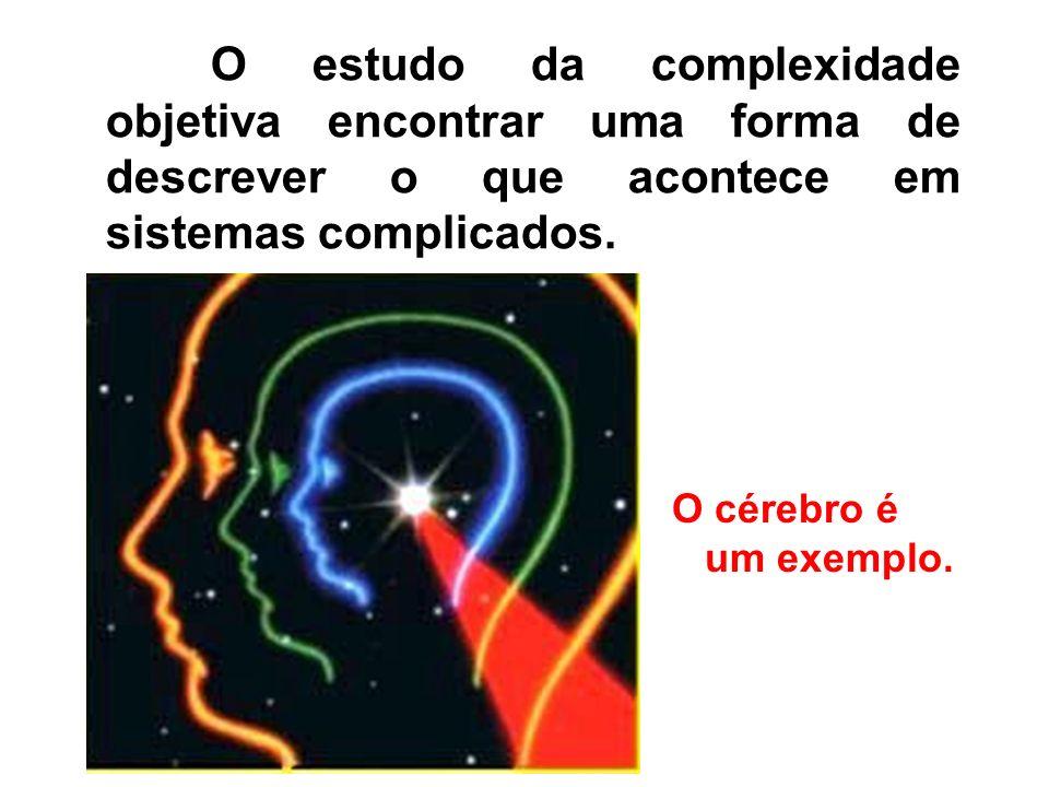 O estudo da complexidade objetiva encontrar uma forma de descrever o que acontece em sistemas complicados.