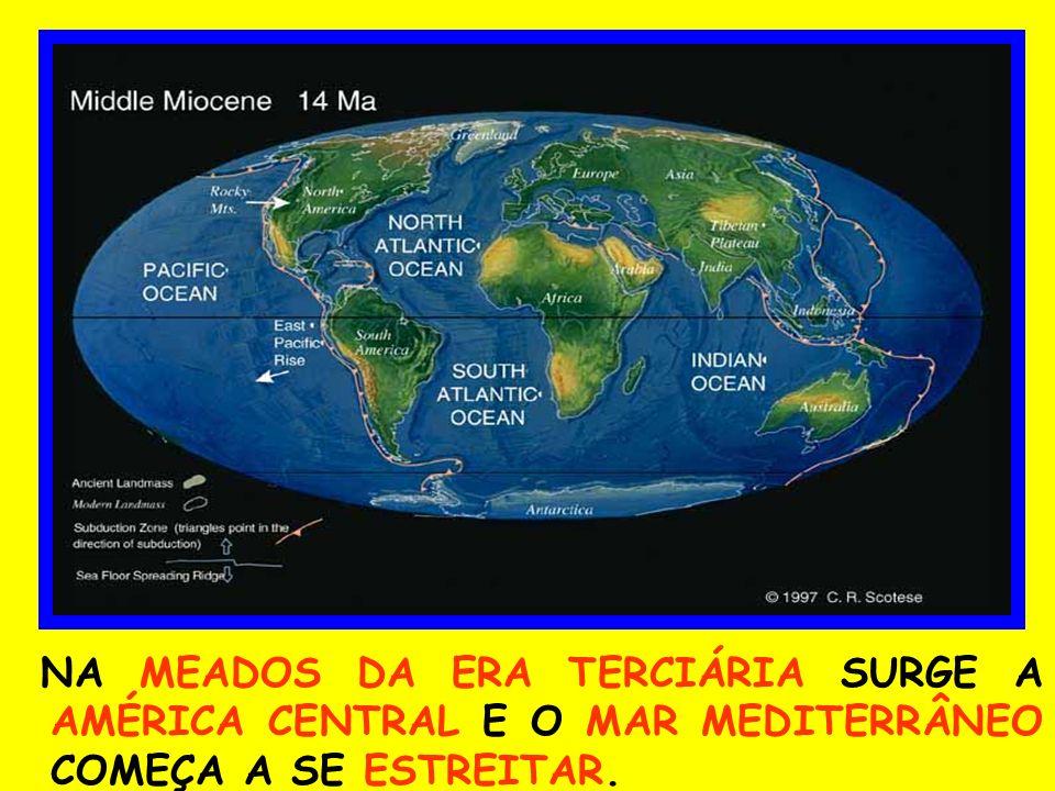 NA MEADOS DA ERA TERCIÁRIA SURGE A AMÉRICA CENTRAL E O MAR MEDITERRÂNEO COMEÇA A SE ESTREITAR.