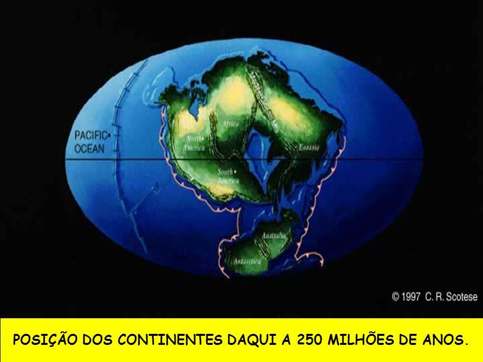 POSIÇÃO DOS CONTINENTES DAQUI A 250 MILHÕES DE ANOS.