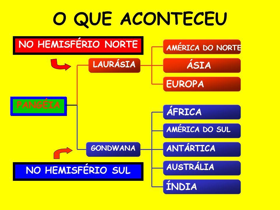 O QUE ACONTECEU NO HEMISFÉRIO NORTE ÁSIA EUROPA PANGÉIA ÁFRICA
