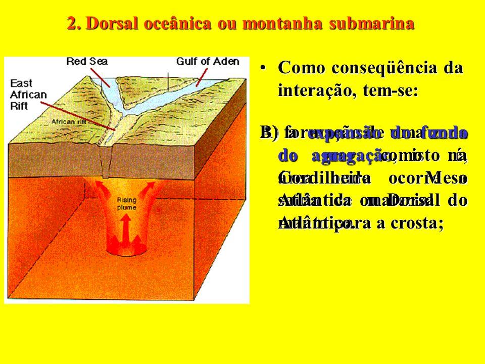 2. Dorsal oceânica ou montanha submarina