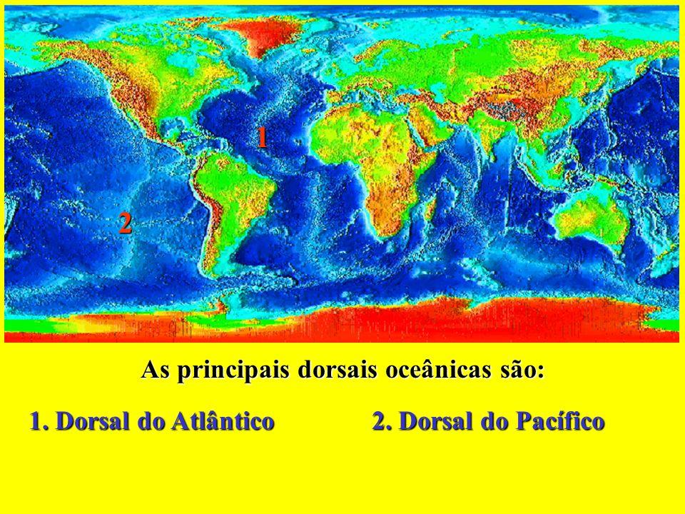 As principais dorsais oceânicas são: