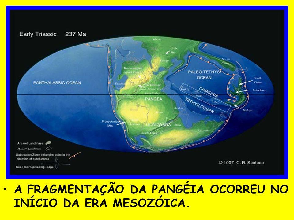 A FRAGMENTAÇÃO DA PANGÉIA OCORREU NO INÍCIO DA ERA MESOZÓICA.