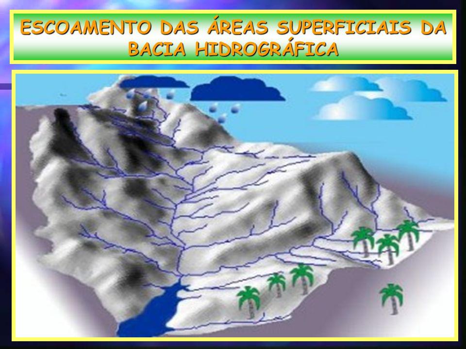 ESCOAMENTO DAS ÁREAS SUPERFICIAIS DA BACIA HIDROGRÁFICA